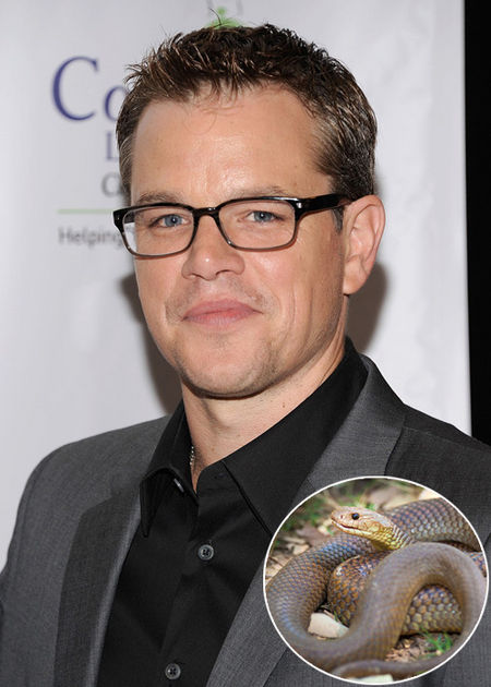 24-Matt-Damon-Fear-of-Snakes