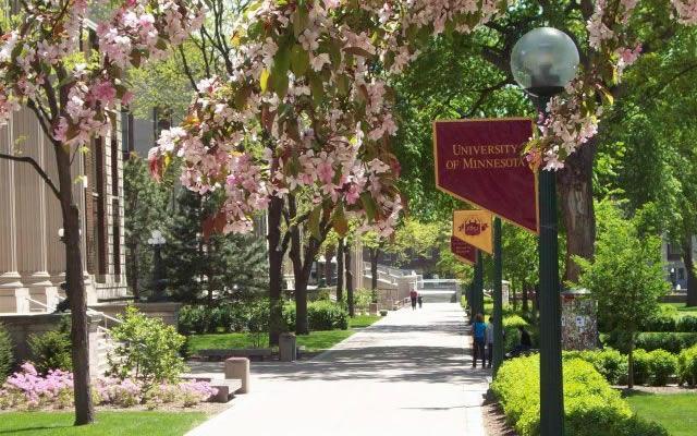 University_Minnesota-book-ah