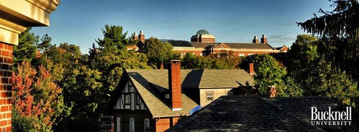 bucknell-university-bachelor-psychology