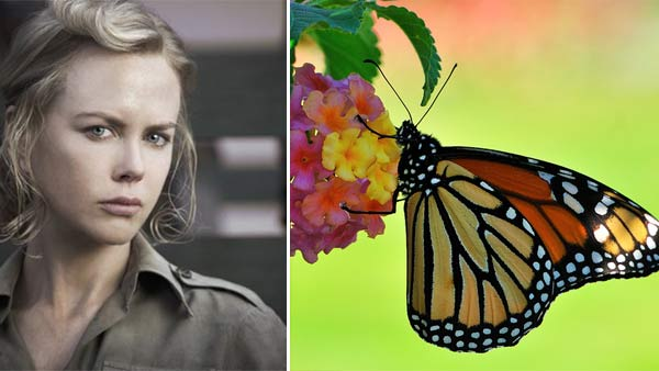 5-Nicole-Kidman-Fear-of-Butterflies
