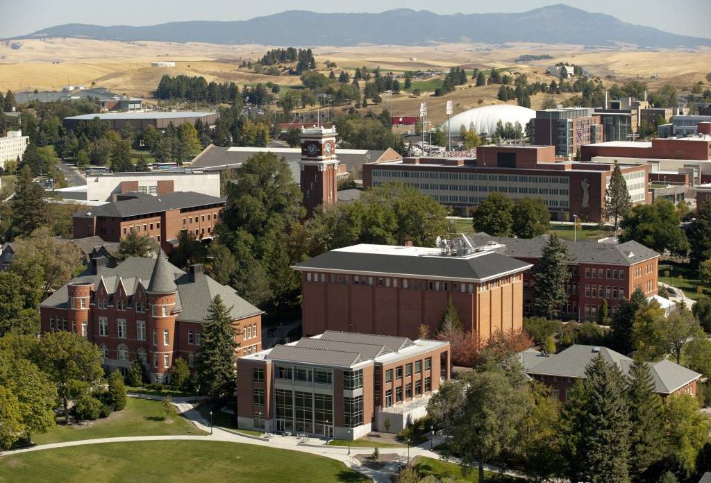washington-state-university-online-psychology