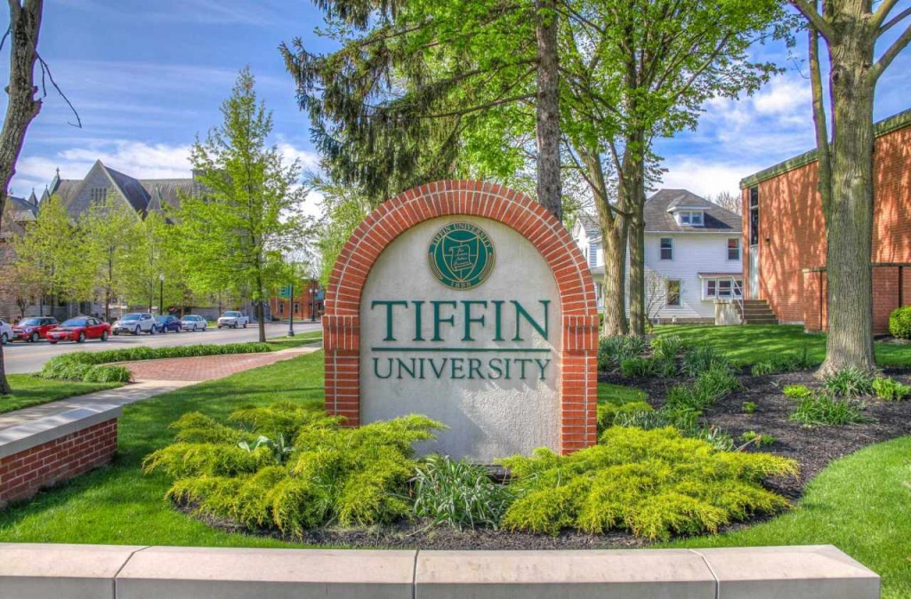 Tiffin University-Online Master of Science in Psychology-Developmental Psychology