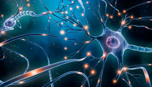 Lucrative Neuroscience Careers